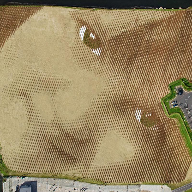 11_acre_portrait_belfast_06