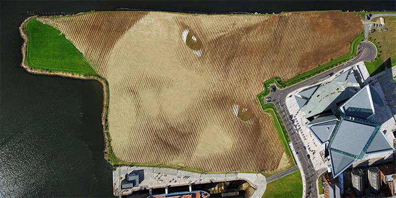 11_acre_portrait_belfast_07