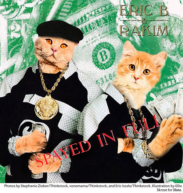 Cat_Rap_HipHop_Covers_04