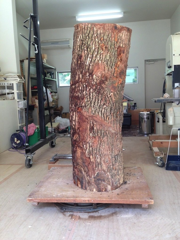 Life_Size_Sculpture_Carved_From_A_Tree_Trunk_by_Yoshitoshi_Kanemaki_2014_05