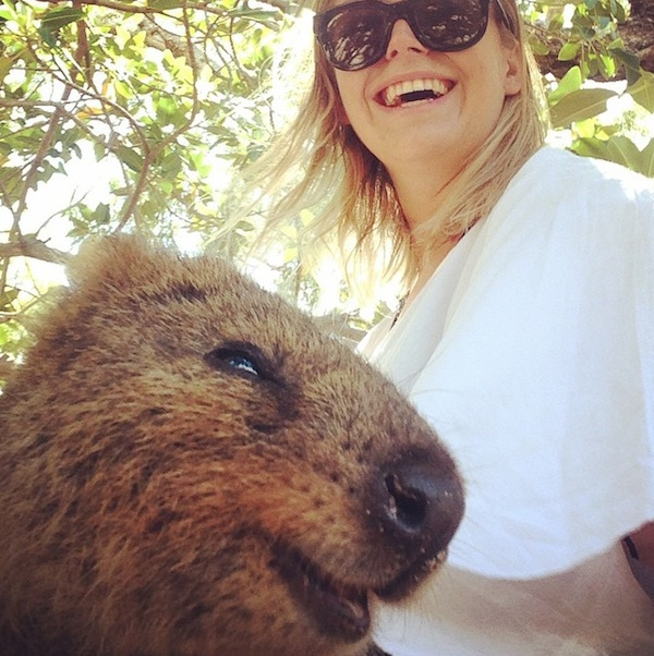 Quokka_Selfies_Meet_the_Worlds_happiest_Animal_on_Instagram_2015_04