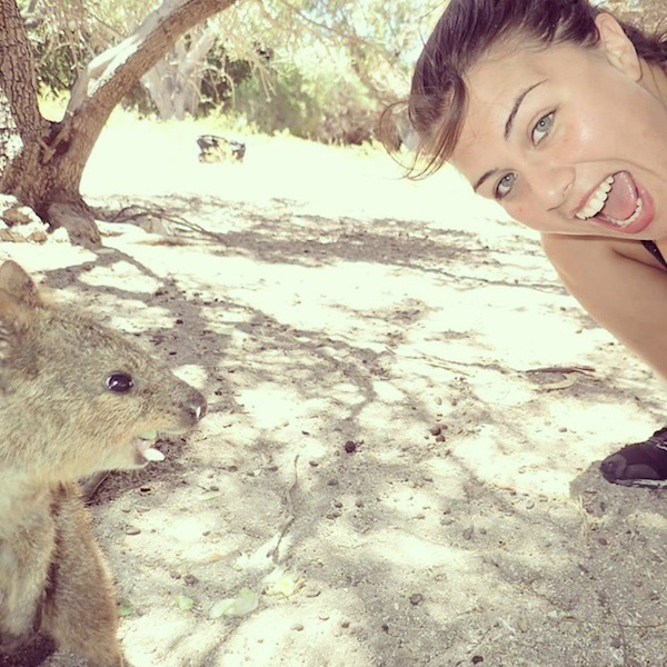 Quokka_Selfies_Meet_the_Worlds_happiest_Animal_on_Instagram_2015_11