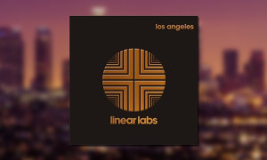 adrian_younge_linear_labs_bb