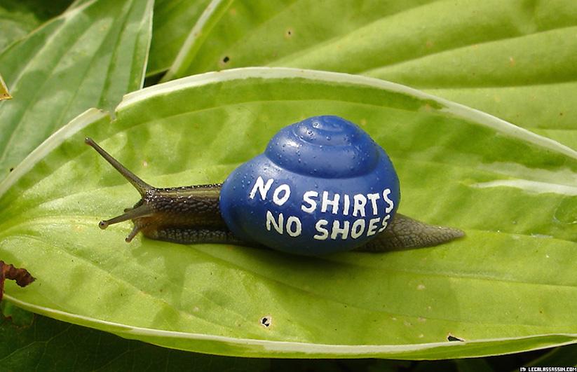 Stefansiverud-snailpimp-snail-art-03