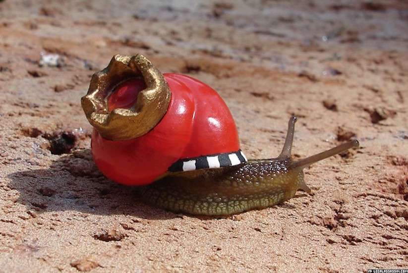 Stefansiverud-snailpimp-snail-art-06