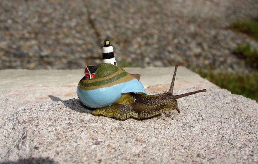 Stefansiverud-snailpimp-snail-art-07