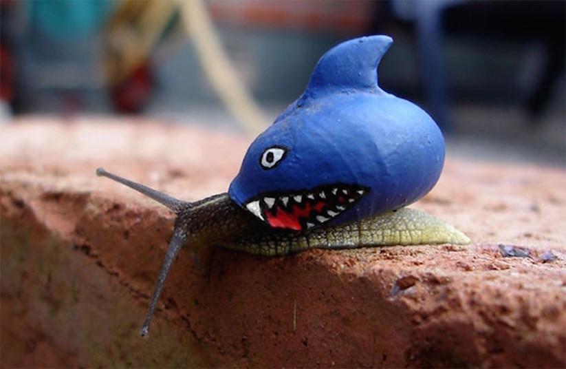 Stefansiverud-snailpimp-snail-art-09