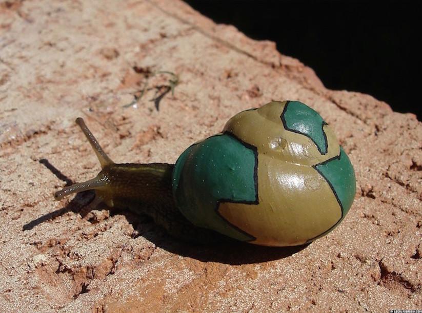 Stefansiverud-snailpimp-snail-art-12