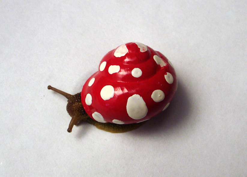 Stefansiverud-snailpimp-snail-art-18