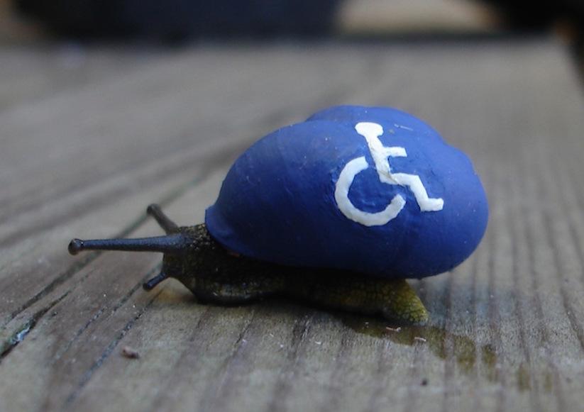 Stefansiverud-snailpimp-snail-art-20