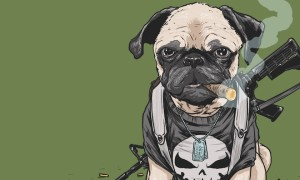 Dogs_of_the_Marvel_Universe_by_Illustrator_Josh_Lynch_2015_header