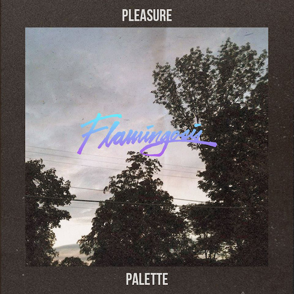 flamingosis_palette_cover