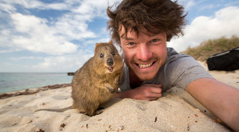 Allan_Dixon_Takes_Brilliant_Selfies_with_All_Kinds_of_Animals_2015_01