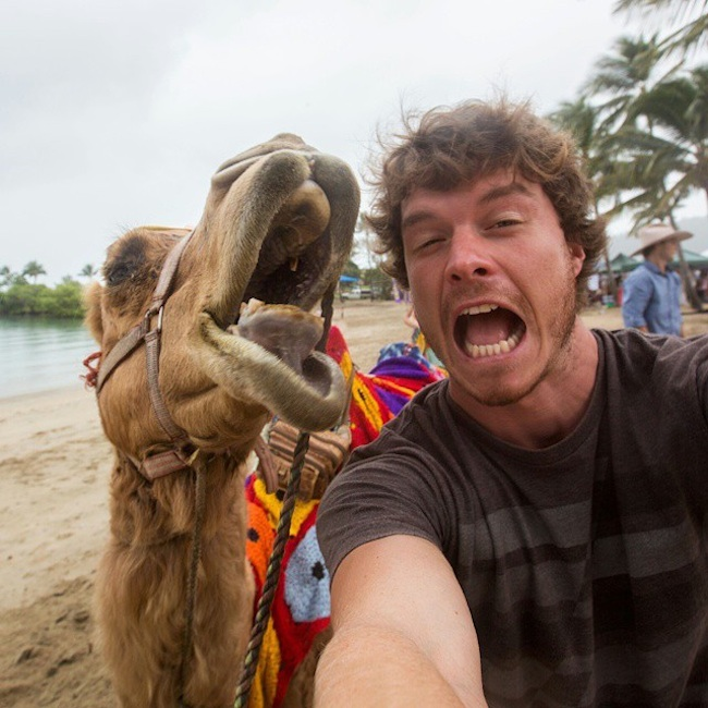 Allan_Dixon_Takes_Brilliant_Selfies_with_All_Kinds_of_Animals_2015_07