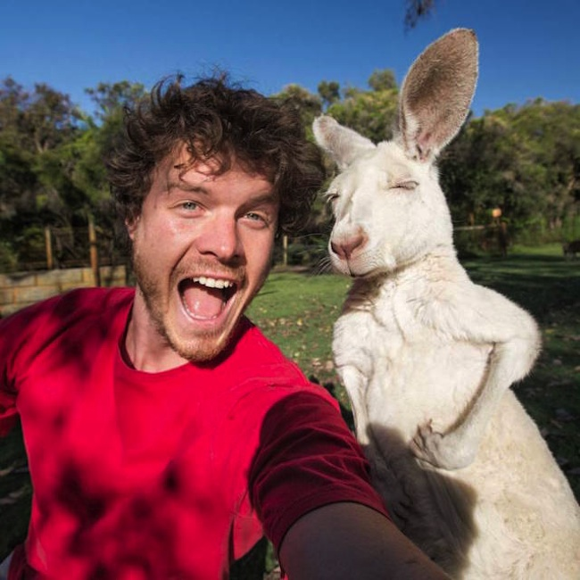 Allan_Dixon_Takes_Brilliant_Selfies_with_All_Kinds_of_Animals_2015_09
