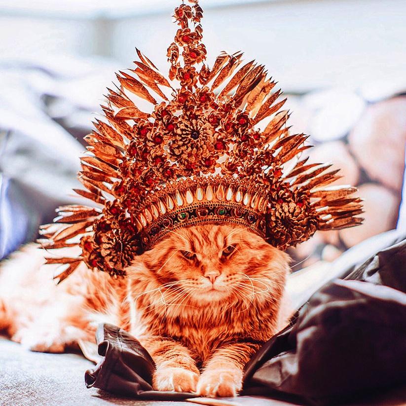 Meet_Kotleta_The_Majestic_Ginger_Cat_of_Russian_Photographer_Kristina_Makeeva_2016_02