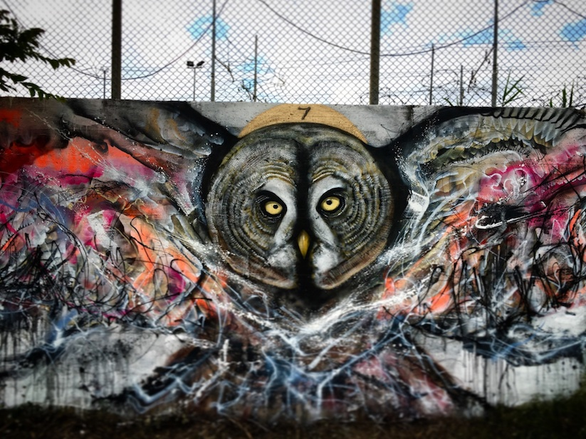 Magic_Birds_New_Spray_Painted_Birds_by_L7m_in_Rome_Italy_2016_01