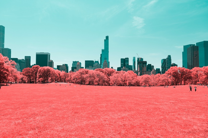 INFRARED_NYC_Central_Park_Captured_from_a_Different_Perspective_by_Paolo_Pettigiani_2016_01