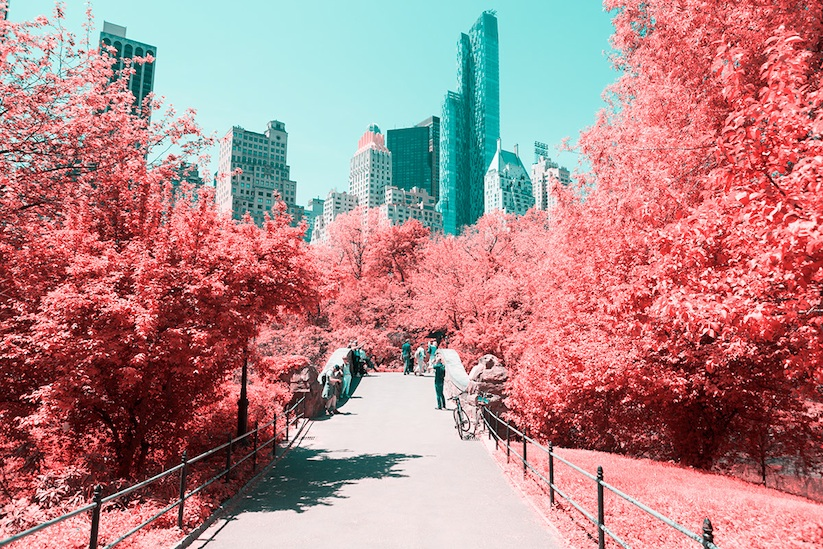 INFRARED_NYC_Central_Park_Captured_from_a_Different_Perspective_by_Paolo_Pettigiani_2016_02