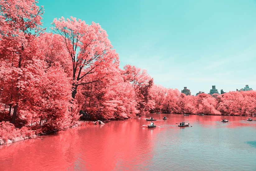 INFRARED_NYC_Central_Park_Captured_from_a_Different_Perspective_by_Paolo_Pettigiani_2016_05