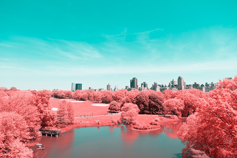 INFRARED_NYC_Central_Park_Captured_from_a_Different_Perspective_by_Paolo_Pettigiani_2016_06