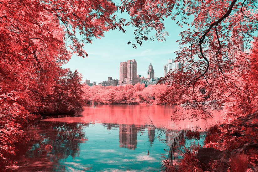 INFRARED_NYC_Central_Park_Captured_from_a_Different_Perspective_by_Paolo_Pettigiani_2016_08
