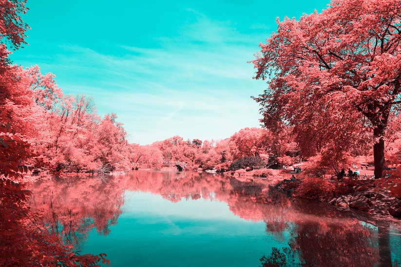 INFRARED_NYC_Central_Park_Captured_from_a_Different_Perspective_by_Paolo_Pettigiani_2016_09