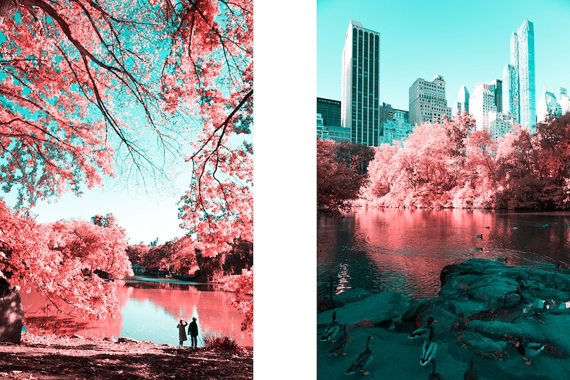 INFRARED_NYC_Central_Park_Captured_from_a_Different_Perspective_by_Paolo_Pettigiani_2016_10