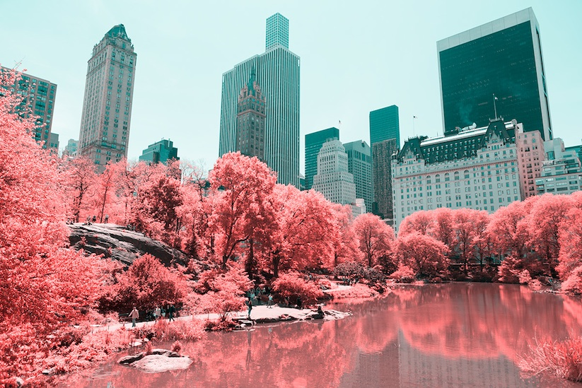INFRARED_NYC_Central_Park_Captured_from_a_Different_Perspective_by_Paolo_Pettigiani_2016_11