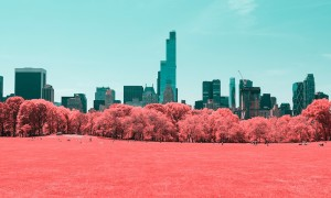 INFRARED_NYC_Central_Park_Captured_from_a_Different_Perspective_by_Paolo_Pettigiani_2016_header