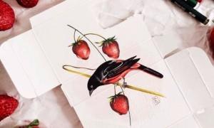 Medicine_as_Metaphor_Birds_Painted_on_Pharmaceutical_Packaging_by_Sara_Landeta_2016_header