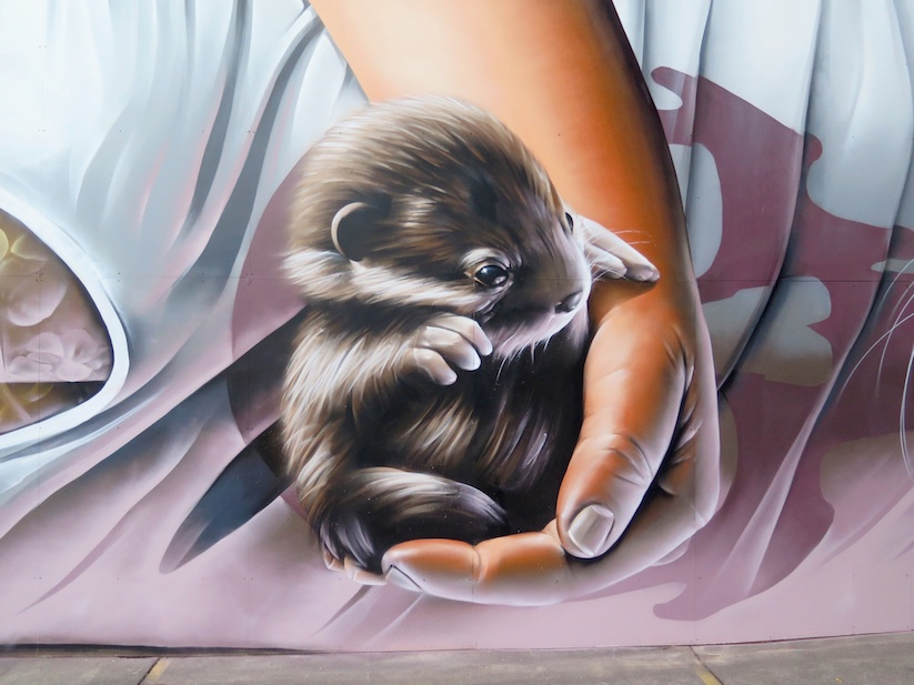 Otters_Awesome_Mural_by_Street_Artist_Smug_One_in_Melbourne_Australia_2016_03