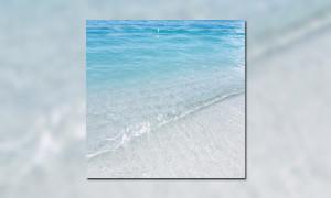 Jeff Kaale x Engelwood EP BB WHUDAT