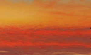 california_now_awesome_paintings_of_light_in_california_skies_by_bradley_hankey_2016_header