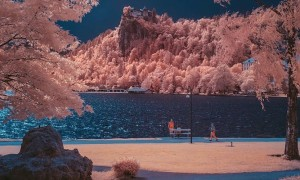 inframunk_surreal_infrared_nature_photography_by_artist_gmunk_2016_header