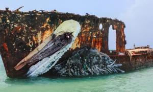 pelican_awesome_aquatic_installation_made_of_trash_by_bordalo_ii_in_aruba_2016_header