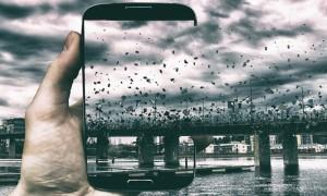 through_the_phone_everyday_surroundings_captured_by_asmo_turunen_2016_header