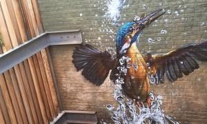 birds_hyperrealistic_mural_by_street_artist_bart_smeets_aka_smates_2016_header
