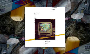 dexter-raw-random-files-bb-whudat
