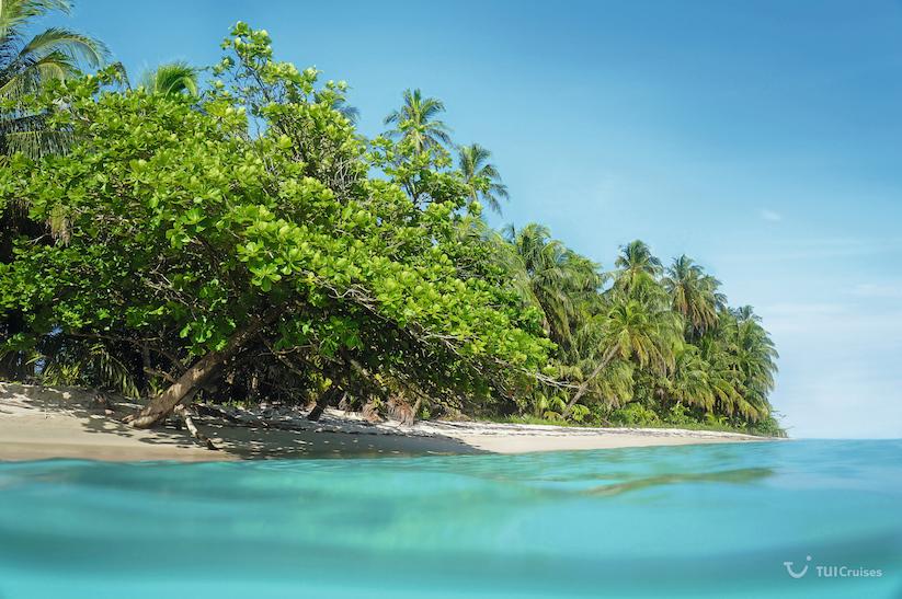 Caribbean beach and sea surface