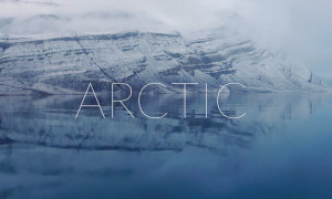 ben-brown_arctic_slider