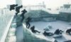 Jason_Paul_Hit_the_Icy_Streets_of_Harbin_in_Freezerunning_2017_header