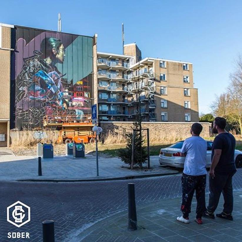 Collaboration_Mural_by_TELMO_MIEL_Sebas_Velasco_in_Rotterdam_2017_06