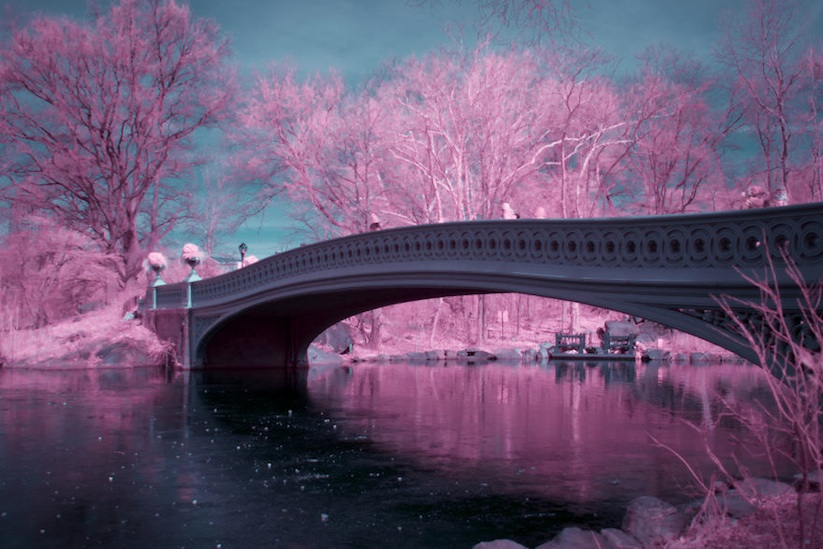 NYCxIR_New_York_City_Captured_in_Infrared_by_Ryan_Berg_2017_13
