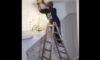 surfing kelly slater wave company 4 pictures clip. Black Bedroom Furniture Sets. Home Design Ideas