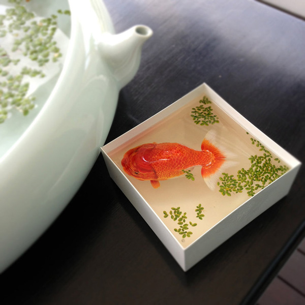 3D-Fish-Paintings_02