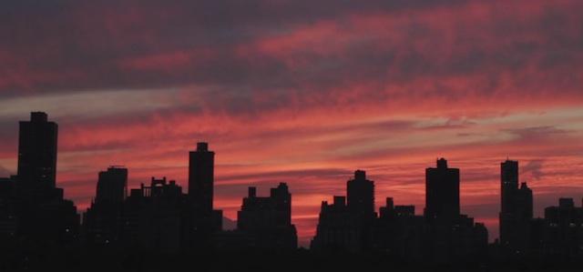 8336615_newyork_01