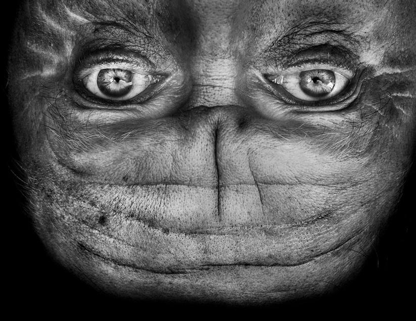 Alienation_Upside_Down_Portraits_Make_People_Look_Like_Aliens_2014_01