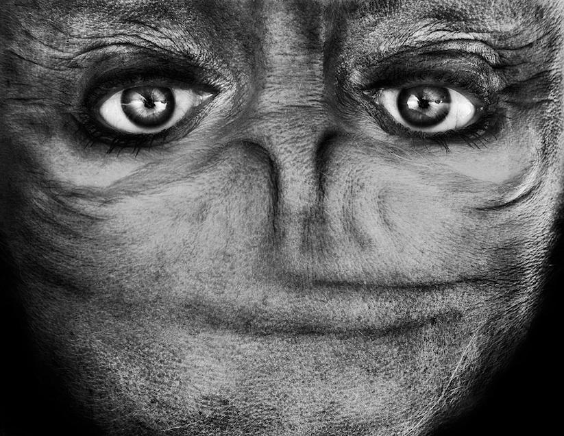 Alienation_Upside_Down_Portraits_Make_People_Look_Like_Aliens_2014_07