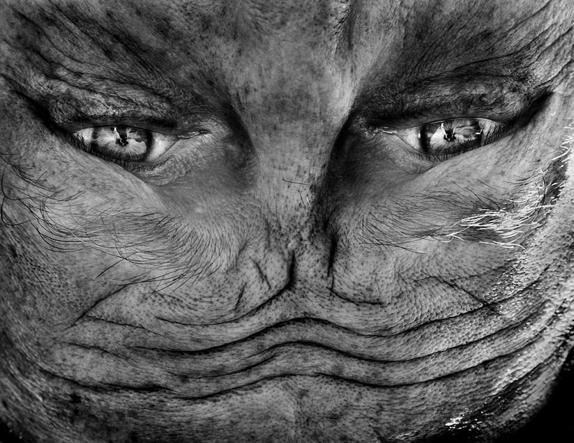 Alienation_Upside_Down_Portraits_Make_People_Look_Like_Aliens_2014_08